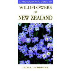 wildflowers new zealand