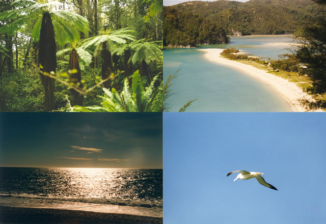 New Zealand. Get some impressions of the wonderful surrounding of this country.